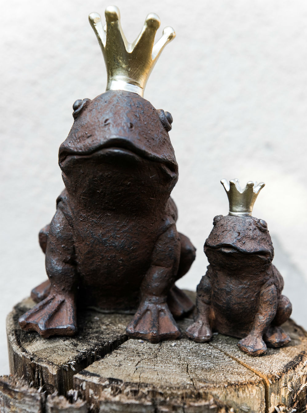 Die süssen Frosche warten auf die Hochzeitsgesellschaft